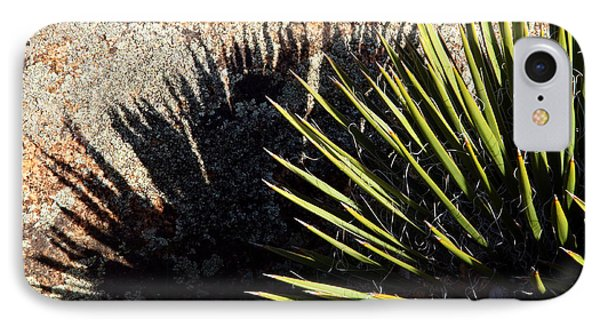 Shadow Of The Yucca Plant IPhone Case by Eric Rundle