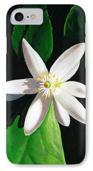 IPhone Case featuring the painting Shadow Play by Janet Greer Sammons