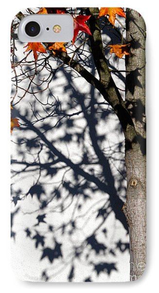 Shadows Of Fall Phone Case by CML Brown