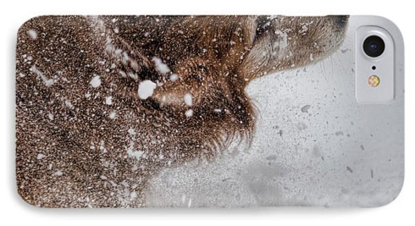 Shaking Off The Snow IPhone Case by John Crothers