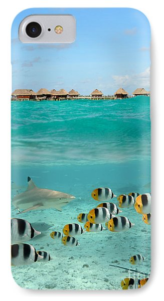 Over-under With Shark And Butterfly Fish At Bora Bora IPhone Case by IPics Photography