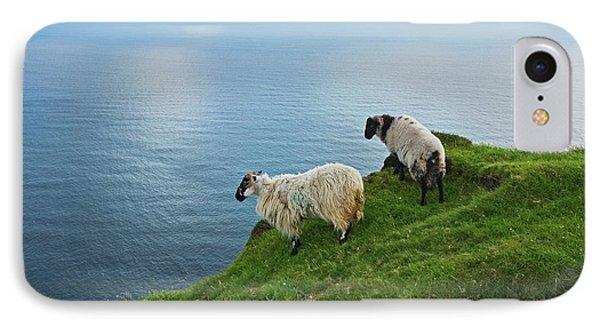 Sheep At Moyteoge Head Bei Dooagh IPhone Case