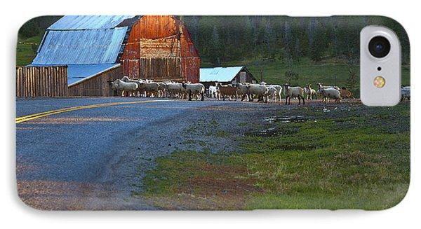 Sheep Crossing Phone Case by Theresa Tahara
