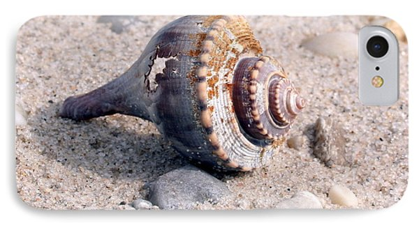IPhone Case featuring the photograph Shell by Karen Silvestri