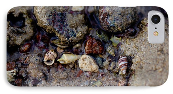 Shells In Bauxite IPhone Case by Carole Hinding
