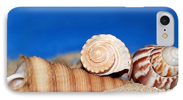 Shells In Sand Phone Case by Francie Davis