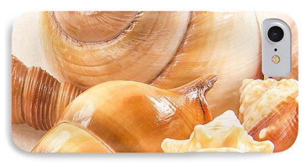 Shells Phone Case by Jean Noren