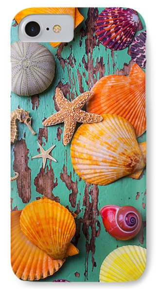 Shells On Old Green Board IPhone 7 Case
