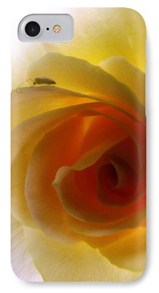 IPhone Case featuring the photograph Shelter Me From Harm by Robyn King