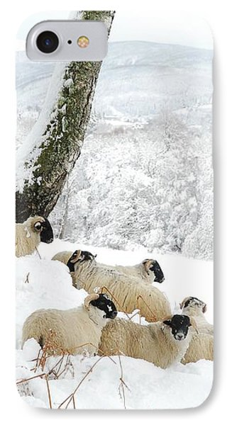 Sheltering Flock Phone Case by John Kelly