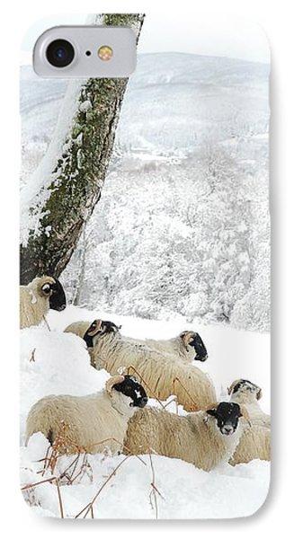 Sheltering Flock Phone Case by John Kelly