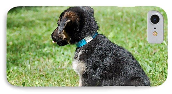 Shepherd Pups 13 IPhone Case