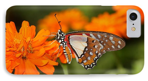 IPhone Case featuring the photograph Sherbet With A Butterfly On Top  by Ruth Jolly