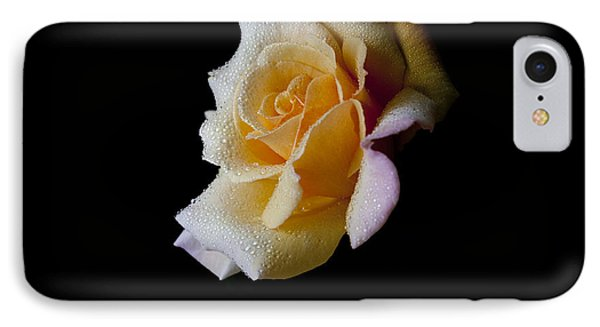 IPhone Case featuring the photograph Shimmering by Doug Norkum