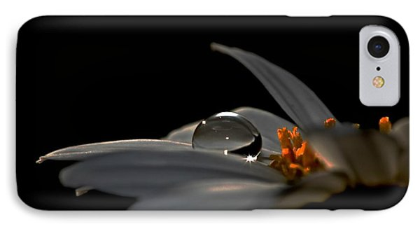 IPhone Case featuring the photograph Shine 2 by Michaela Preston