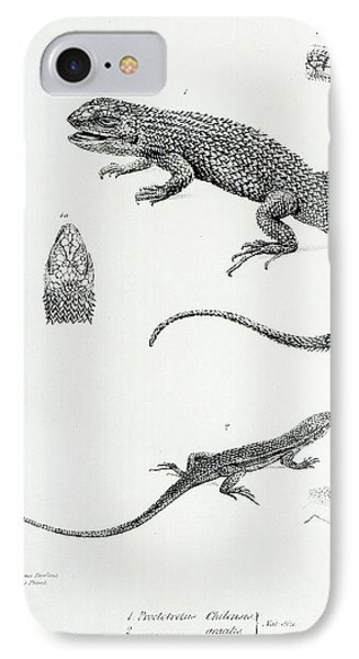 Shingled Iguana IPhone Case by English School
