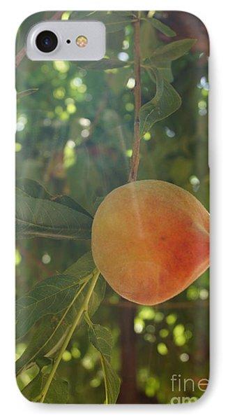 Shining Peach Phone Case by Kerri Mortenson