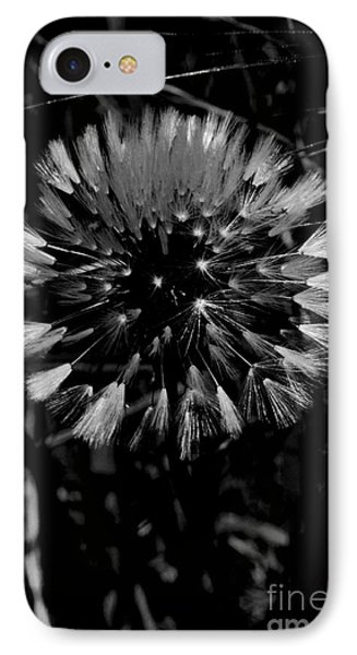 IPhone Case featuring the photograph Shining by Simona Ghidini