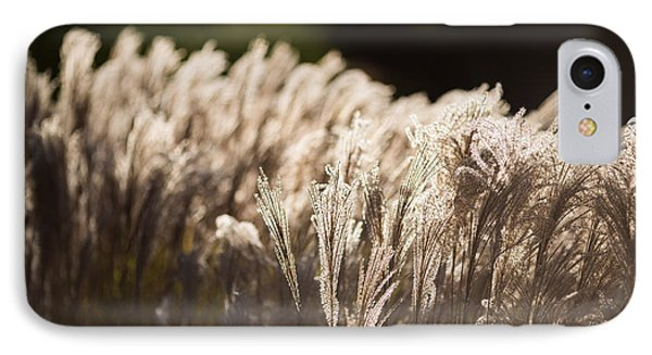 IPhone Case featuring the photograph Shining Weeds by Mike Lee