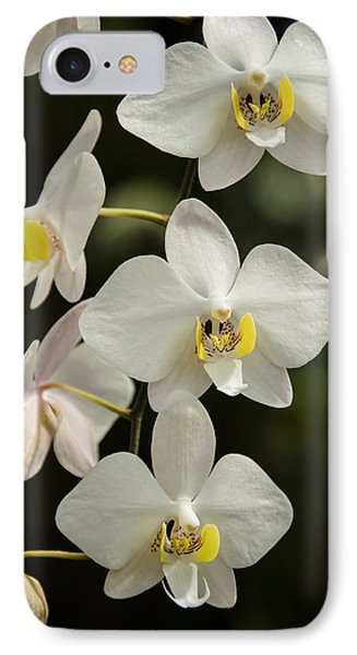 Shinning Orchids Phone Case by Penny Lisowski