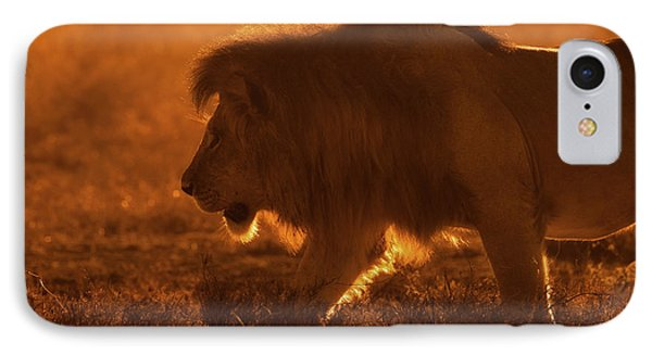 Lion iPhone 7 Case - Shiny King by Mohammed Alnaser