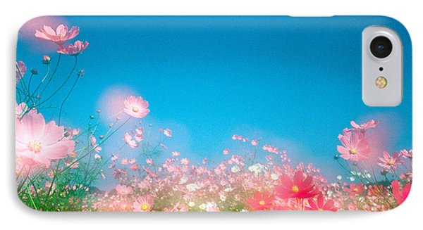 Shiny Pink Flowers In Bloom With Blue IPhone Case by Panoramic Images