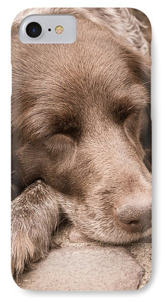 IPhone Case featuring the photograph Shishka Dog Dreaming The Day Away by Peta Thames