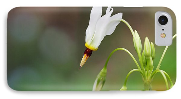 Shooting Star Wildflower IPhone Case by Melinda Fawver