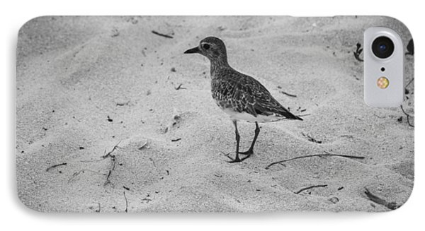 IPhone Case featuring the photograph Shore Bird by Phil Abrams