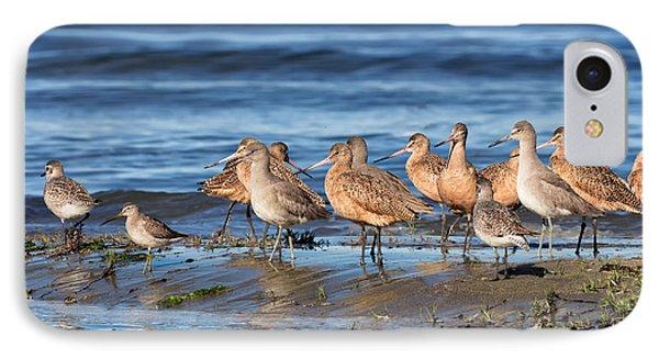 Shorebirds On Bodega Bay IPhone Case