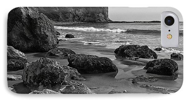 Shoreline Near Abalone Cove IPhone Case by Ron Regalado
