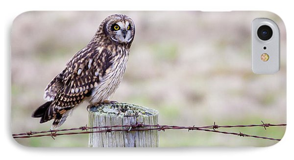 Short Eared Owl Boundary Bay IPhone Case