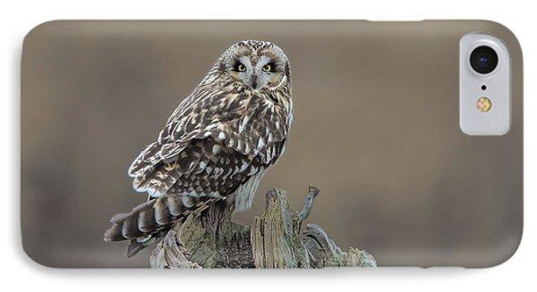 Short Eared Owl IPhone Case by Daniel Behm