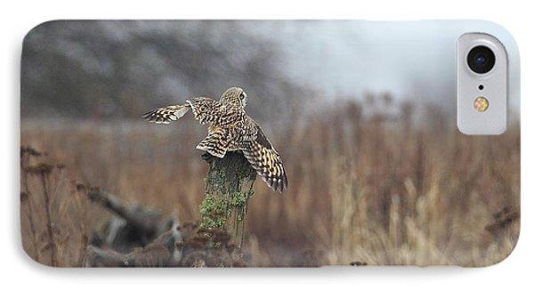 Short Eared Owl In Habitat IPhone Case by Daniel Behm