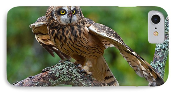 IPhone Case featuring the photograph Short Eared Owl by Rodney Campbell