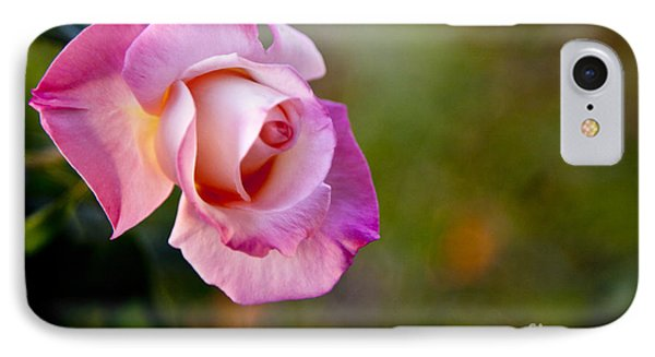 Short Lived Beauty IPhone Case by David Millenheft