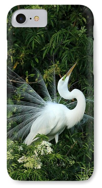 Showy Great White Egret IPhone Case by Sabrina L Ryan