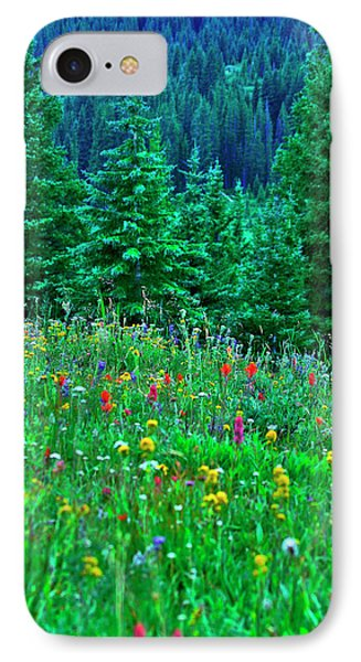 IPhone Case featuring the photograph Shrine Pass Wildflowers by Jeremy Rhoades