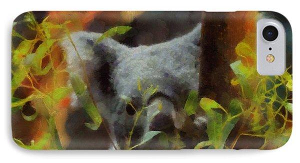 Shy Koala IPhone Case by Dan Sproul
