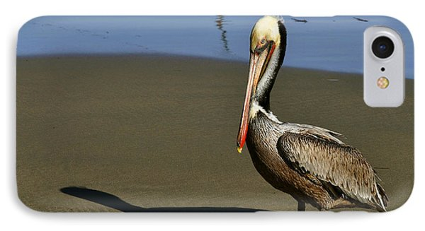 Shy Pelican IPhone Case