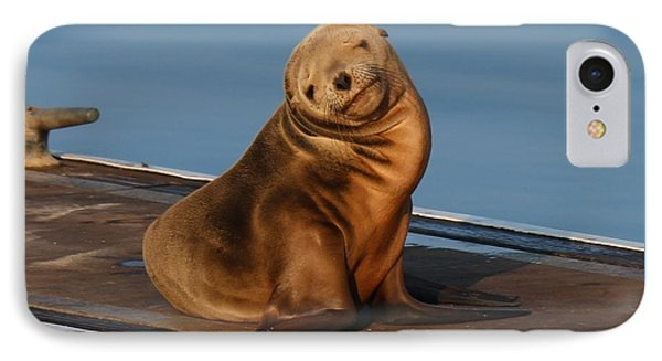 IPhone Case featuring the photograph Shy Sea Lion Pup  by Christy Pooschke