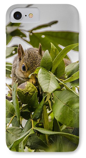 IPhone Case featuring the photograph Shy Squirrel by Bradley Clay