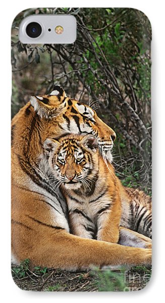 Siberian Tiger Mother And Cub Endangered Species Wildlife Rescue IPhone Case by Dave Welling
