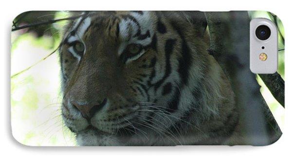 Siberian Tiger Profile Phone Case by John Telfer