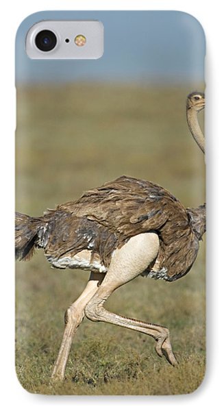 Ostrich iPhone 7 Case - Side Profile Of An Ostrich Running by Panoramic Images