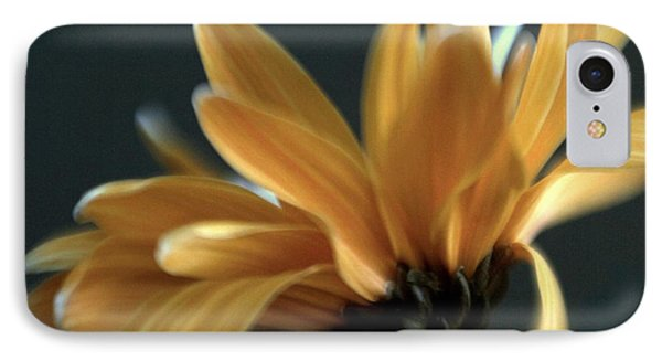 IPhone Case featuring the photograph Signature Daisy by Mary Lou Chmura