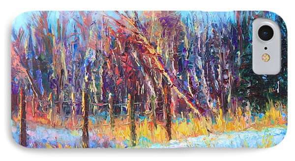 Signs Of Spring - Trees And Snow Kissed By Spring Light Phone Case by Talya Johnson