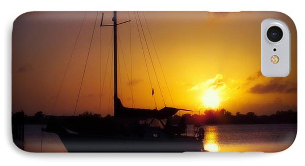 Silence Of Night Phone Case by Karen Wiles
