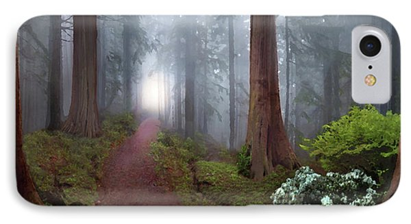 Silence Of The Forest IPhone Case by David M ( Maclean )