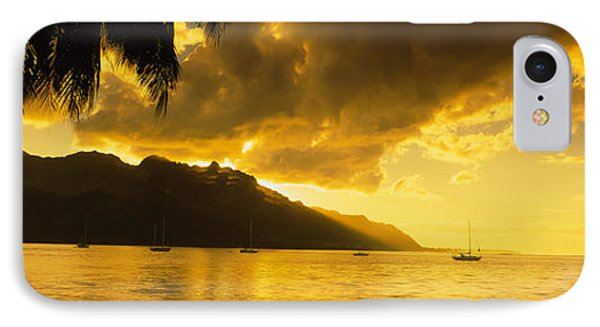 Silhouette Of Palm Trees At Dusk, Cooks IPhone Case
